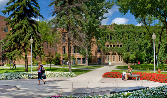 Minnesota State University - Online Masters in Curriculum Instruction
