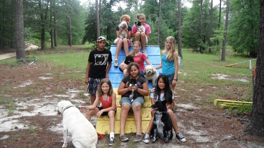 dog-lovers-camp-south-summer-camps