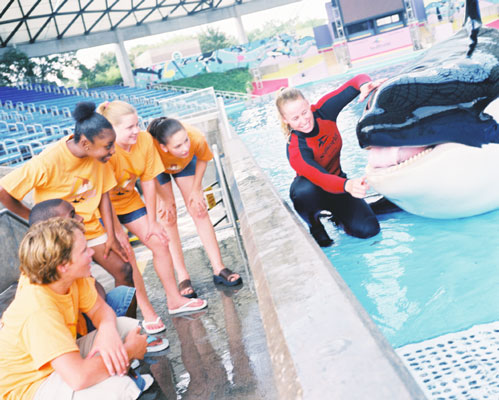 seaworld-aventure-club-south-summer-camps